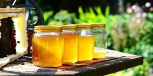 10 ملايين دولار عائدات صادرات العسل التركي منذ مطلع 2019